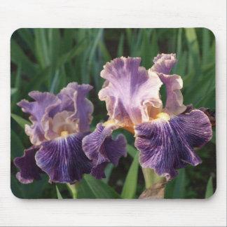 美しい紫色およびラベンダーのアイリス マウスパッド