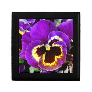美しい紫色のパンジーの花のプリントのギフト用の箱 ギフトボックス