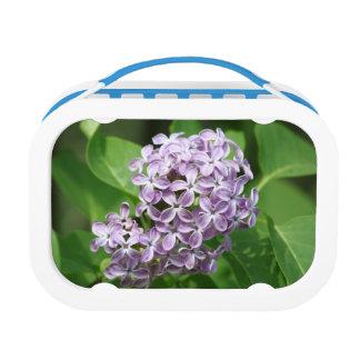美しい紫色のライラックの写真が付いているお弁当箱 ランチボックス