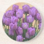 美しい紫色の春のチューリップ コースター