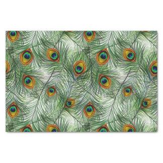 美しい緑の孔雀の羽 薄葉紙