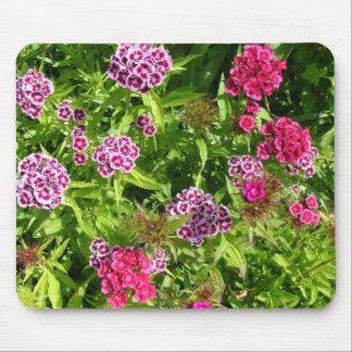美しい色の花、カーネーション マウスパッド