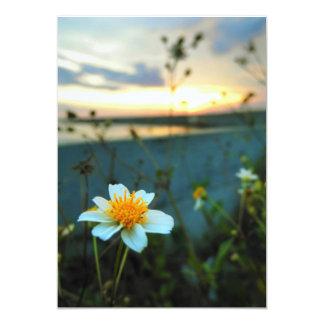 美しい花 カード