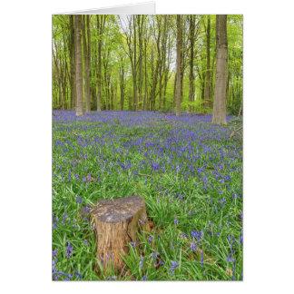 美しい英国のBluebellの木製の挨拶状 カード