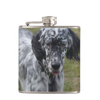 美しい英国セッター犬 フラスク