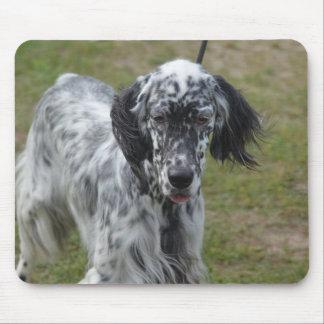 美しい英国セッター犬 マウスパッド