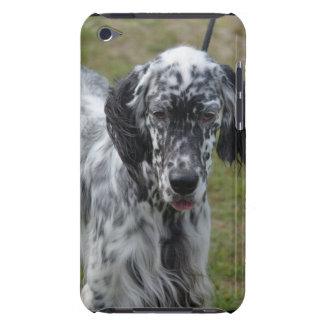 美しい英国セッター犬 Case-Mate iPod TOUCH ケース