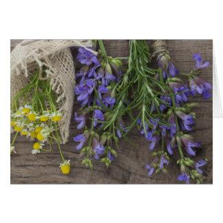 美しい草の背景 カード