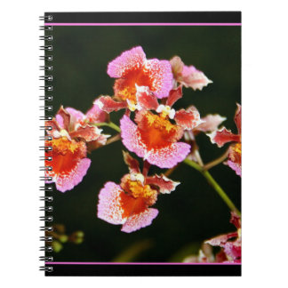 美しい蘭のノート ノートブック