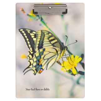 美しい蝶および小さく黄色い花 クリップボード