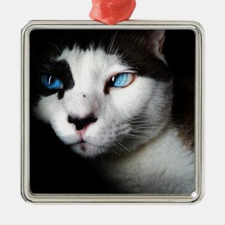美しい青い目のシャム猫愛 メタルオーナメント