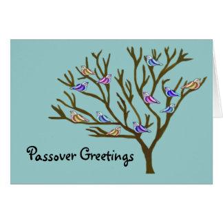 美しい鳥の過ぎ越しの祝いカード カード