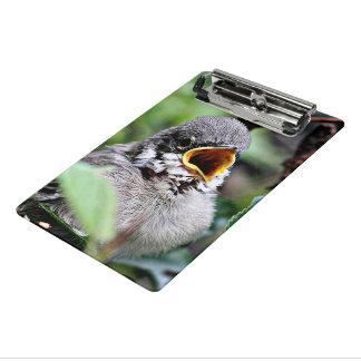 美しい鳥 ミニクリップボード