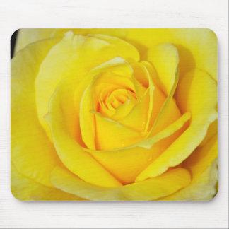 美しい黄色のバラの花びら マウスパッド