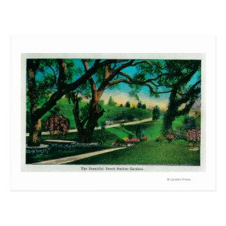 美しいBuschくぼんだGardensPasadena、カリフォルニア ポストカード