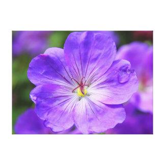 美しいcranesbillの花 キャンバスプリント