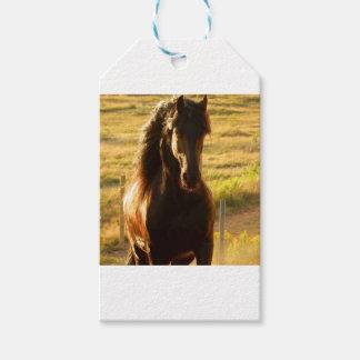 美しいFRIESIANの馬の種馬 ギフトタグ