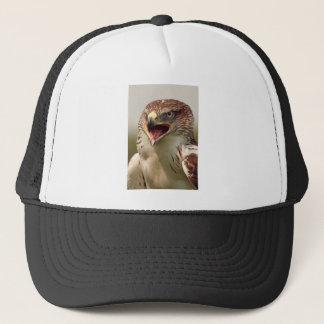 美しいLannerの《鳥》ハヤブサの帽子か帽子 キャップ