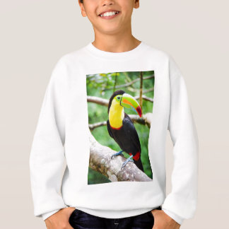 美しいToucan スウェットシャツ
