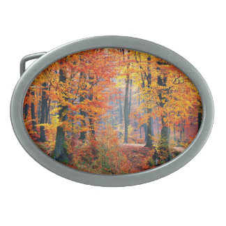 美しく多彩な秋の森林太陽光線 卵形バックル