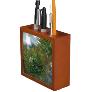 美しく小ぎれいな大枝の机のオルガナイザー ペンスタンド