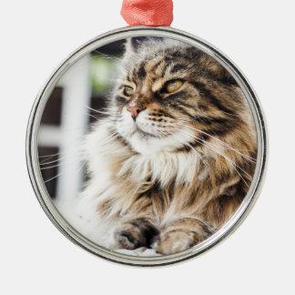 美しく柔らかい虎猫のシベリアのペルシャのデザイン メタルオーナメント