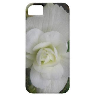 美しく白いカーネーションのiPhone 5の箱 iPhone 5 Case