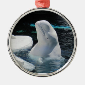 美しく白いシロイルカのクジラ メタルオーナメント