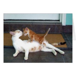 美しく白いメスの茶色のぶち猫および子ネコ カード