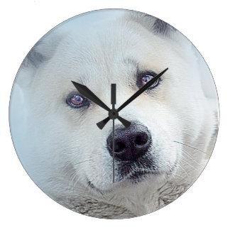 美しく白い秋田の雪犬のオオカミの時計 ラージ壁時計