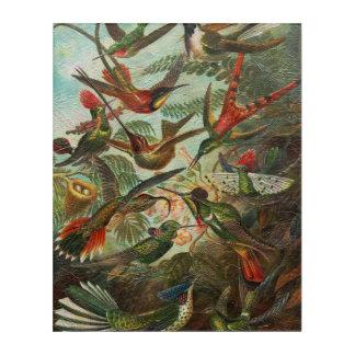 美しく色彩の鮮やかなヴィンテージの鳥 アクリルウォールアート