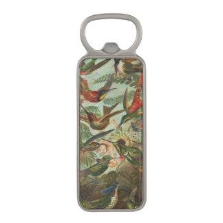 美しく色彩の鮮やかなヴィンテージの鳥 マグネット栓抜き