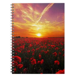 美しく赤いケシの花分野の日没 ノートブック