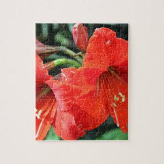 美しく赤い花の写真 ジグソーパズル