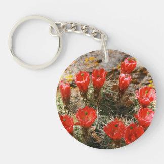 美しく赤い開花が付いているサボテン キーホルダー