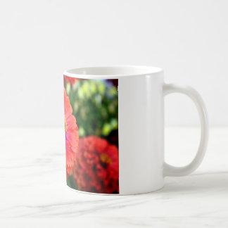 美しく赤い《植物》百日草の花のデザイン コーヒーマグカップ