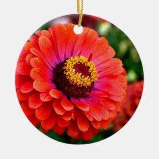 美しく赤い《植物》百日草の花のデザイン 陶器製丸型オーナメント