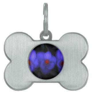 美しく青い紫色のクロッカスの開花 ペットネームタグ