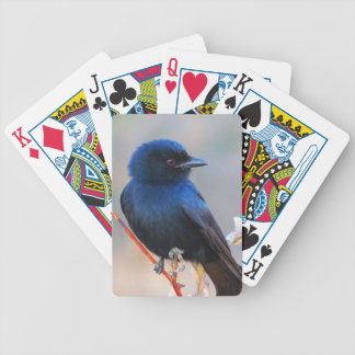 美しく青い鳥の自然の景色 バイスクルトランプ