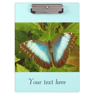 美しく青および黒い蝶 クリップボード