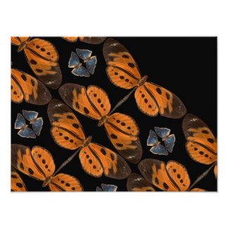 美しく青及びオレンジ蝶写真のプリント フォトプリント