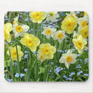 美しく黄色いラッパスイセンの庭 マウスパッド