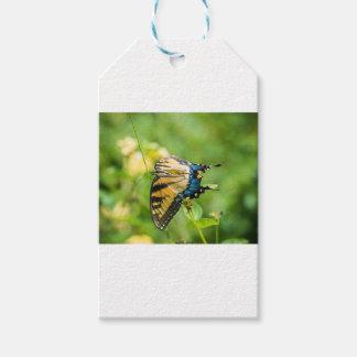 美しく黄色い蝶 ギフトタグパック