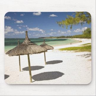 美女のロバの公共のビーチ、南東のマリシャス、 マウスパッド
