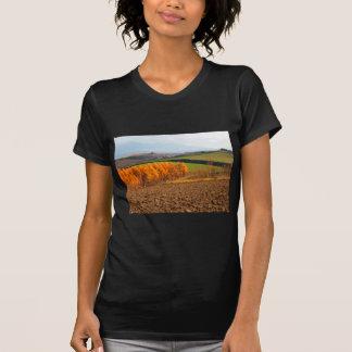 美瑛 秋2011 Tシャツ