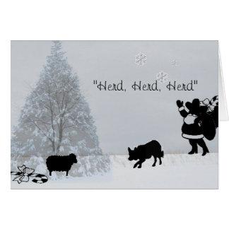 """""""群れ、群れ、群れ""""の~Borderのコリーのクリスマス カード"""