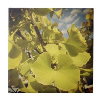 群葉のタイルのイチョウ タイル