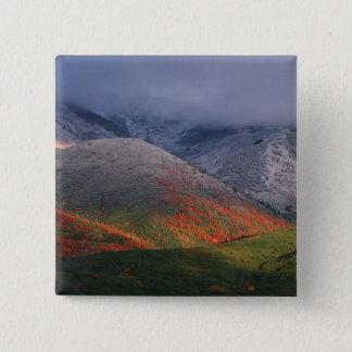 群葉、アメリカハナノキおよび秋の3季節 5.1CM 正方形バッジ