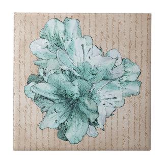 老化させた手紙の水の図解入りの、写真付きので真新しい花 タイル