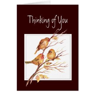 、聖なる書物、経典あなたの考えること、Matthewの6:26、鳥 カード